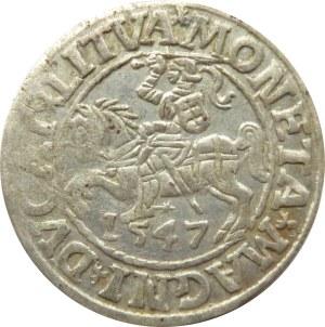 Zygmunt II August, półgrosz 1547, Wilno