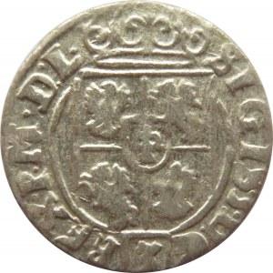 Zygmunt III Waza, półtorak 1625, Bydgoszcz, półkozic w tarczy R2