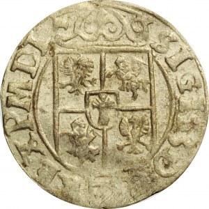 Zygmunt III Waza, półtorak 1628 półkozic w owalnej tarczy, Bydgoszcz, rzadki (R8)
