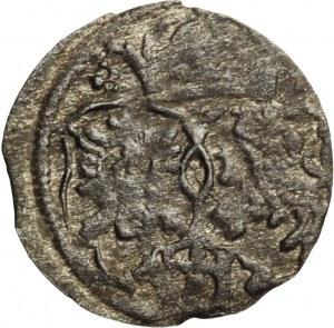 Zygmunt III Waza, denar koronny 1622, Kraków