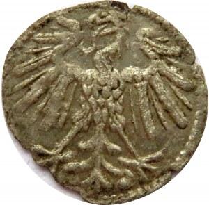 Zygmunt II August, denar 1547, Wilno, bardzo rzadki (R6!!!)