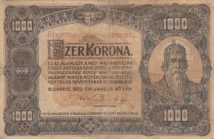 Hungary, 1000 Korona, 1920, FINE, p66a