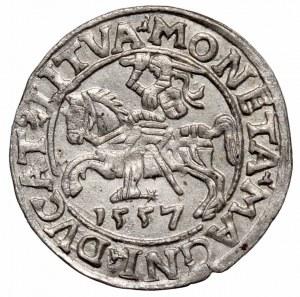 Zygmunt II August, Półgrosz 1557, Wilno - LI/LITVA