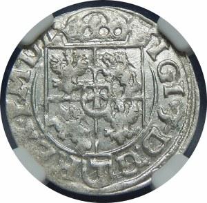 Zygmunt III Waza, Półtorak 1618, Bydgoszcz – Sas w tarczy ozdobnej