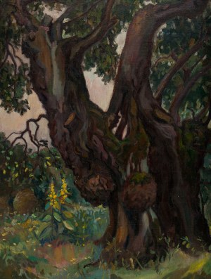 Bronisław Jamontt (1886 Dokudowo -1957 Toruń), Pejzaż leśny