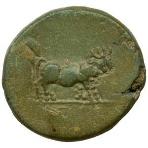 Roman Provincial, Macedon, Philippi, Tiberius, AE19 - VERY RARE