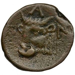 Greece, Cimmerian Bosporos, Pantikapaion, AE17