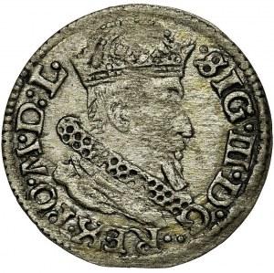 Sigismund III Vasa, Groschen Vilnius 1625