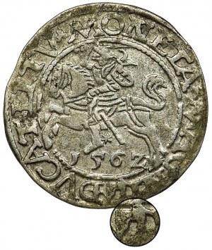 Zygmunt II August, Półgrosz Wilno 1562 L/LITV - TOPÓR, RZADKI