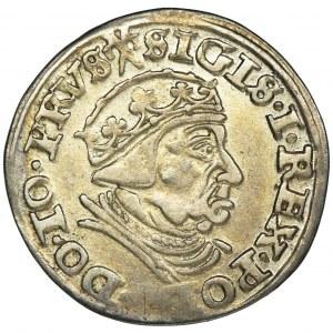 Sigismund I the Old, 3 Groschen Danzig 1540 - PRVS