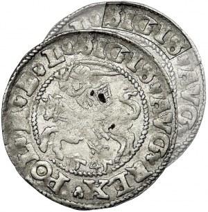 Sigismund II August, Halfgroat Vilnius 1545 - double D, VERY RARE
