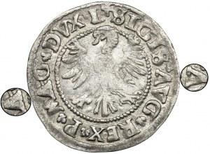 Sigismund II August, Halfgroat Vilnius 1546 - letters Λ - RARE