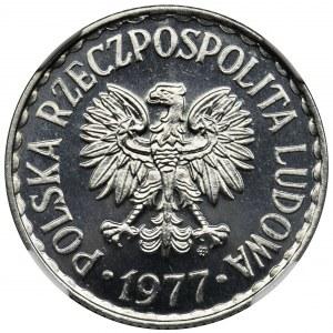 1 złoty 1977 - NGC MS64 PL - jak lustrzanka - BARDZO RZADKI
