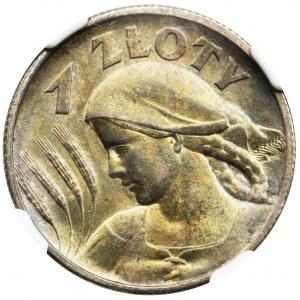 Kobieta i kłosy, 1 złoty Londyn 1925 - NGC MS63 - PIĘKNA