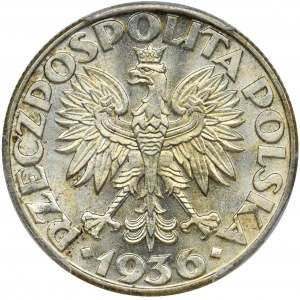 Żaglowiec, 2 złote 1936 - PCGS MS65