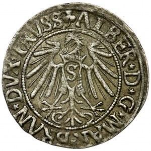 Duchy of Prussia, Albrecht Hohenzollern, Groschen Königsberg 1541