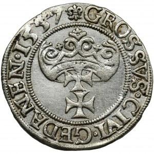 Sigismund II August, Groschen Danzig 1557 - RARE