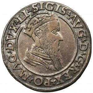 Zygmunt II August, Czworak Wilno 1569 - LI/LITV
