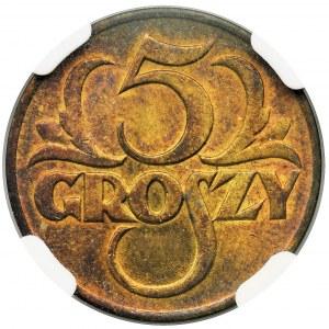 5 groszy 1923 Mosiądz - NGC MS66