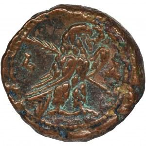 Rome Provincial, Egypt, Alexandria, Probus, BI Tetradrachm