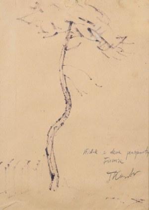 Tadeusz KANTOR (1915-1990), Widok z okna pensjonatu Firenze