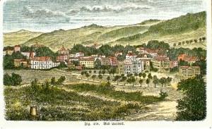 LĄDEK-ZDRÓJ. Panorama miasta, anonim, niemiecka grafika z XIX wieku; drzew. szt