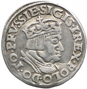 Trojak, Zygmunt I Stary, 1536 Gdańsk