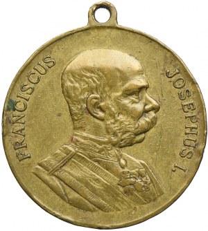 Medal, Francieszek Józef I, Cesarskie manewry Cieszyn 1906