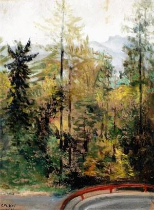 Aneri Irena Weissowa (1888-1981), Drzewa - widok serpentyn drogi do Szczawnicy, 1961