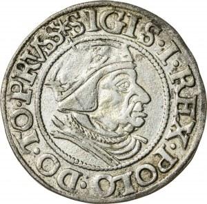 Zygmunt I Stary (1506–1548), grosz gdański, Gdańsk; 1538