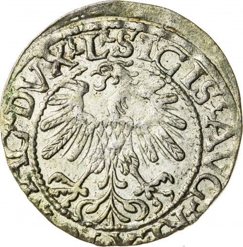 Zygmunt II August [1544 (1548) –1572], półgrosz litewski, Wilno; 1559