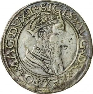 Zygmunt II August [1544 (1548) –1572], czworak litewski, Wilno; 1567