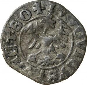 Śląsk, Ludwik II Jagiellończyk (1509-1526), półgrosz, Świdnica; (?)