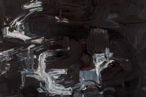Norman LETO ur. 1980, Obraz zniszczony patrzeniem (1), 2010
