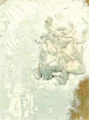 Jakub CZYSZCZOŃ (ur. 1983), Podrabianie pieniędzy, 2012