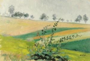Irena WEISS - ANERI (1888-1981), Pejzaż