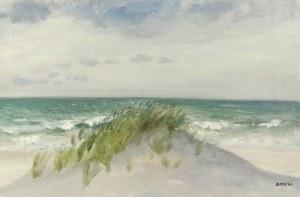 Irena WEISS - ANERI (1888-1981), Pejzaż z Jastrzębiej Góry