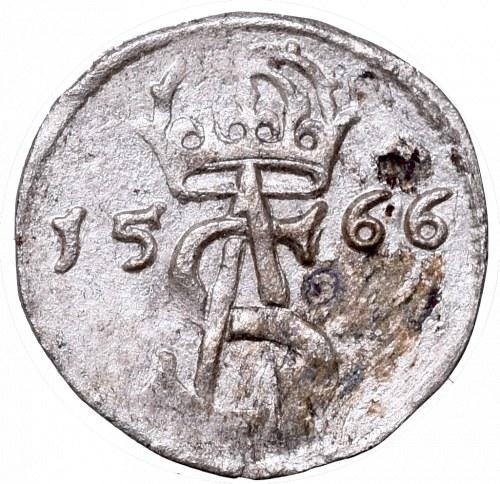 Zygmunt II August, Dwudenar 1566, Wilno