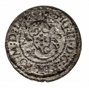Polska, Zygmunt III Waza 1587-1632, szeląg 1623, Wilno