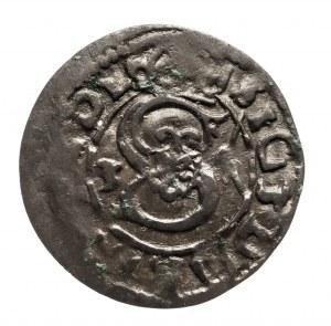 Polska, Zygmunt III Waza 1587-1632, ternar 1625, Łobżenica.
