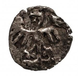 Polska, Kazimierz IV Jagiellończyk 1446-1492, denar koronny