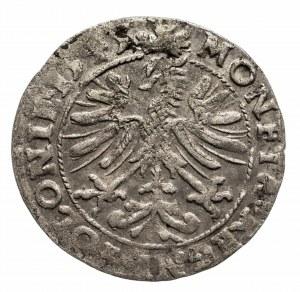 Polska, Zygmunt I Stary 1506-1548, grosz 1545, Kraków.