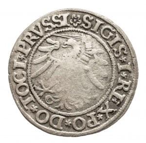 Polska, Zygmunt I Stary 1506-1548, grosz 1533, Elbląg.
