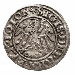 Polska, Zygmunt I Stary 1506-1548, szeląg 1546, Gdańsk.