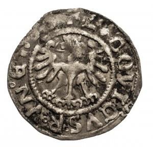 Śląsk, miasto Świdnica, Ludwik Jagiellończyk jako król Czech i Węgier 1516-1526, półgrosz 1526