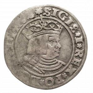 Polska, Zygmunt I Stary (1506–1548), grosz 1530, Toruń