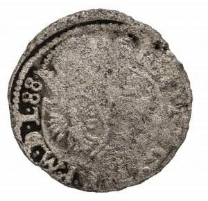 Polska, Zygmunt III Waza 1587-1632, szeląg 1588, Poznań - rzadkość