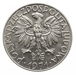 Polska, PRL 1944-1989, 5 złotych 1971 Rybak