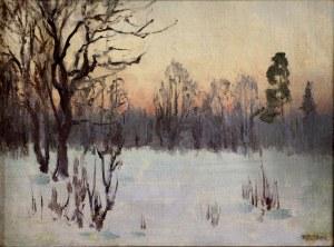 Teodor Ziomek (1874-1937), Zimowy poranek