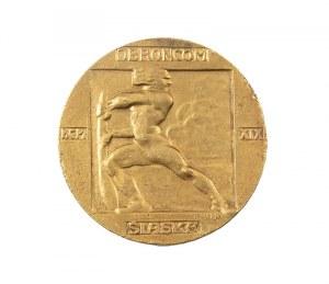 Medal Obrońcom Śląska, 1918 r.